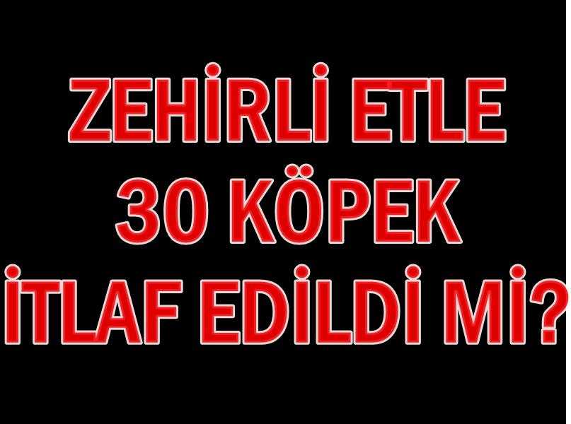 Photo of TİREBOLU'DA KÖPEKLERE İTLAF…