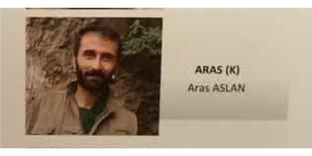 GİRESUN'DA GRİ KATEGORİDEKİ O PKK'LI TERÖRİST DE YAKALANDI