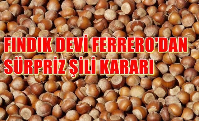 FERRERO FINDIK ŞİLİ'YE Mİ YÖNELİYOR