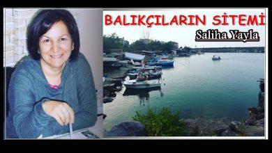 Photo of SALİHA YAYLA'NIN YENİ YAZISI