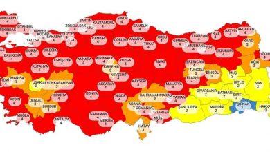 Photo of KONTROLLÜ NORMALLEŞME VİRÜSÜ TETİKLEDİ