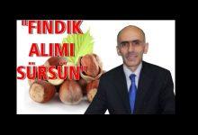 Photo of ZİRAAT ODASI DA  'TMO PİYASADA KALSIN' DEDİ