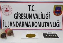 Photo of BONZAİ KÖYLERE ÇIKTI