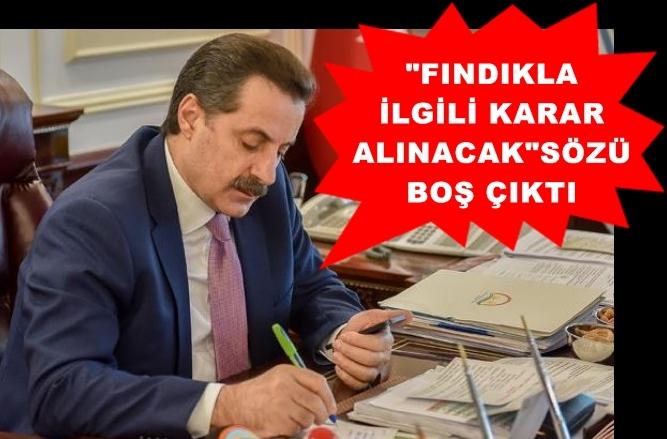 Photo of BAKAN ÇELİK'TEN FINDIKÇIYA UMUT YOK