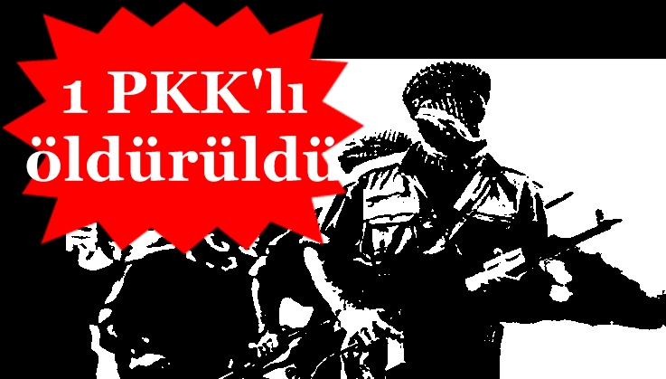 ŞEBİNKARAHİSAR'DAN SIZAN PKK'LILARLA ÇATIŞMA