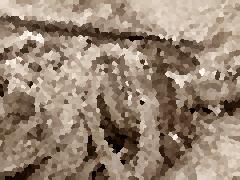 ŞEBİNKARAHİSAR'DA ÖLDÜRÜLEN TERÖRİST CEPHANEYLE GEZİYORMUŞ