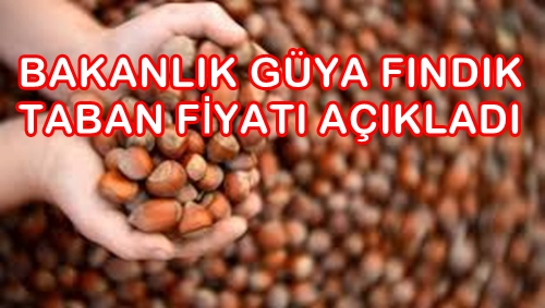 Photo of FINDIKTA FİYAT ŞOKU…GEÇEN SEZON NEYSE O!..