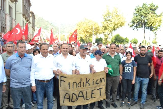 Photo of FINDIK YÜRÜYÜŞÜ SONA ERDİ