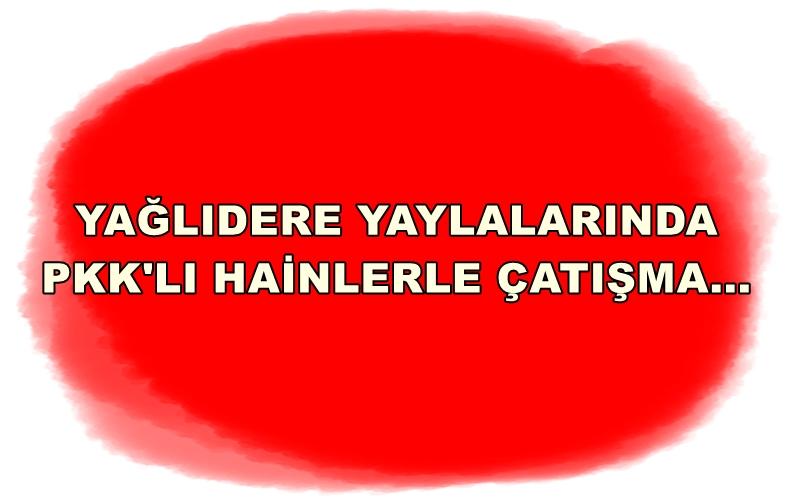 GİRESUN KIRSALINDA PKK'LI AVI