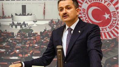 Photo of BAKAN PAKDEMİRLİ'DEN FINDIKLA İLGİLİ AÇIKLAMA